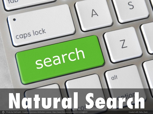 Natural Search 自然検索